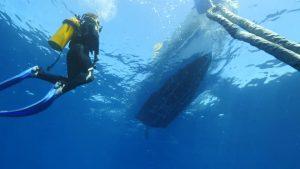 Diver service